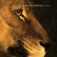 album-lions-art